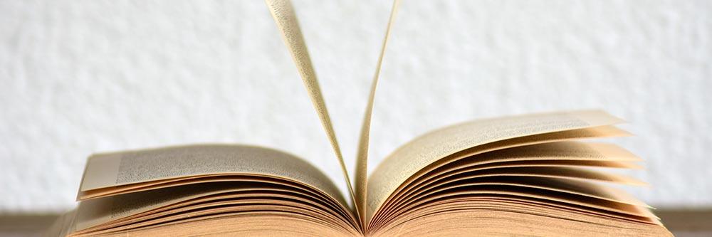 Słownik pojęć WordPress – część 1