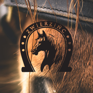 Strona firmowa dla stajni koni
